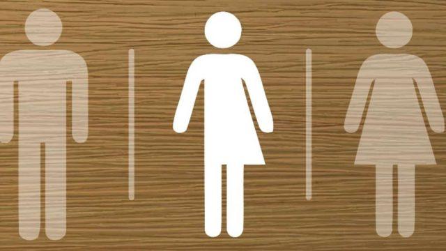 baños inclusivos INE 3