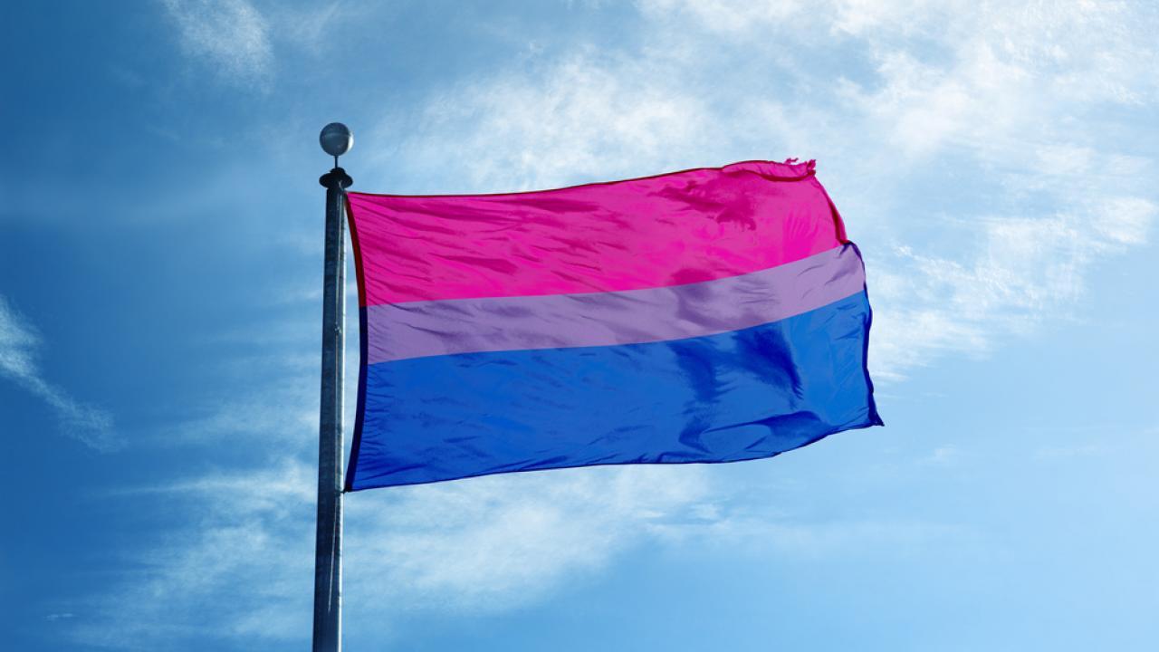 Bandera del Orgullo bisexual