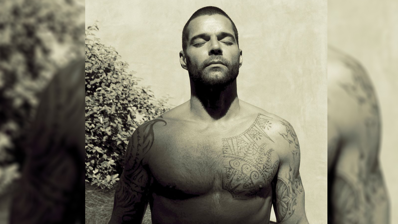 Fotos Ricky Martin sin camisa significado
