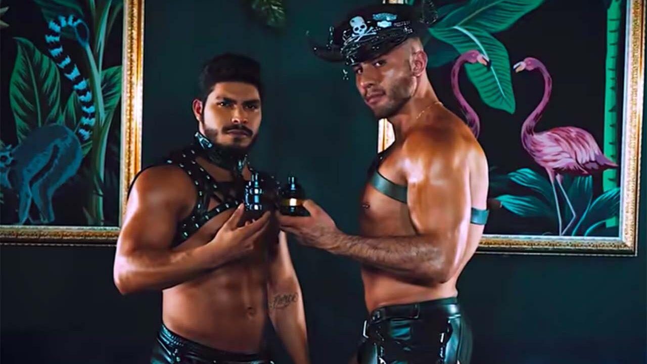 Veneno y Tóxico en La más draga 3