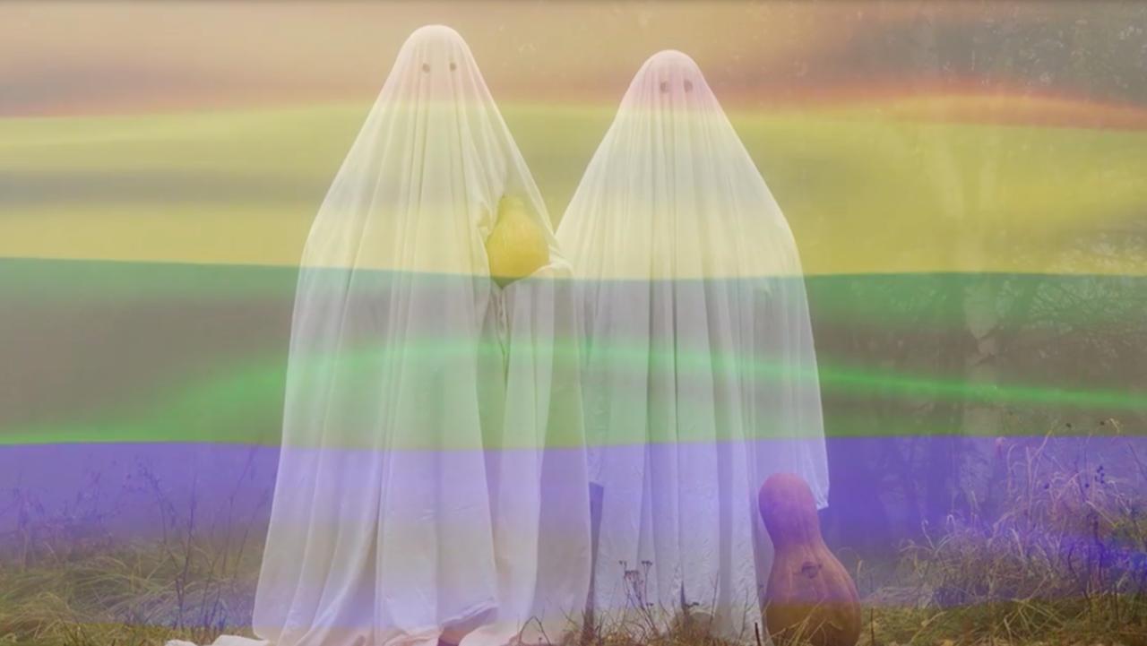 fantasmas gay estudio tonto paranormal