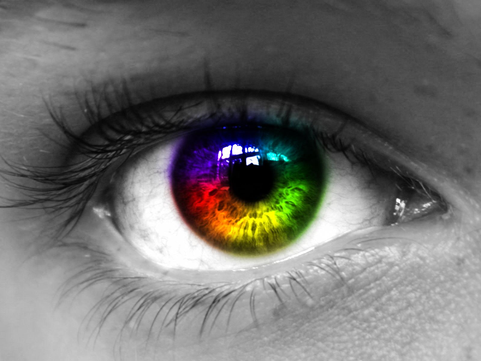 LGBT+ demencia