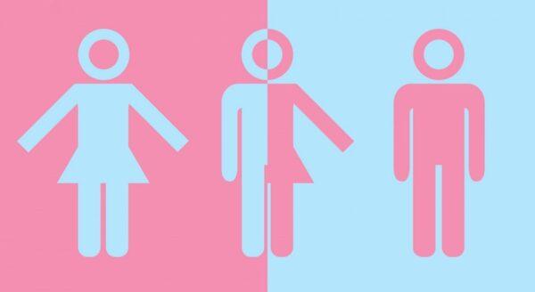 plurisexualidades trisexualidad