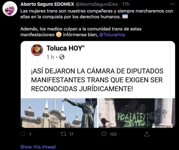 ley identidad de género edomex estado de méxico toluca feministas transodiantes radicales estado de méxico