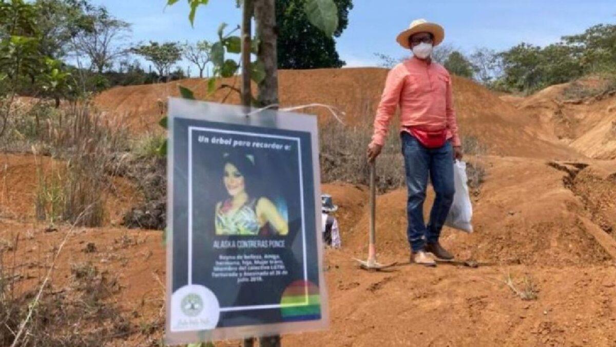 Toda vida vale proyecto para sembrar árboles por personas asesinadas