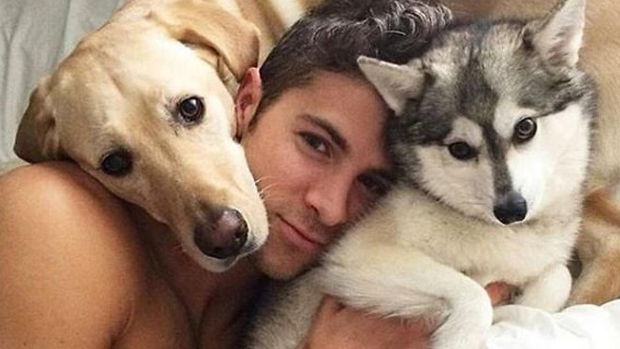 Mascotas y la salud mental de los LGBT+