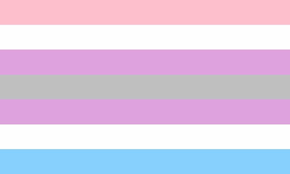 bandera intergénero