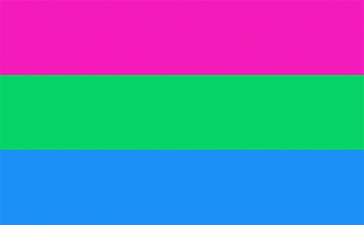 banderas orgullo lgbt+ pocos conocen polisexual