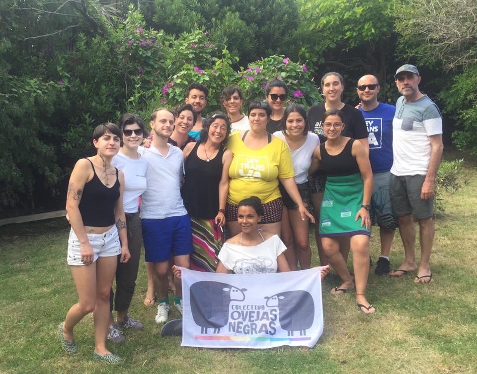 colectivo ovejas negras uruguay