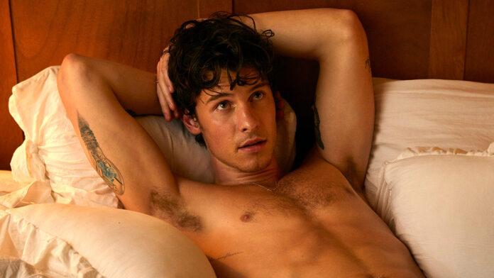 Shawn Mendes desnudo Wonderland