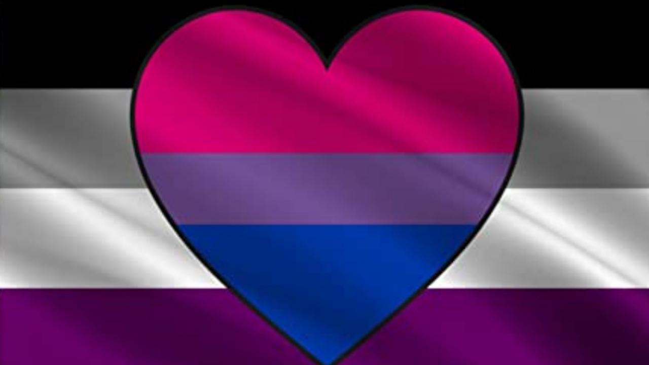 bisexualidad asexualidad orientaciones sexuales