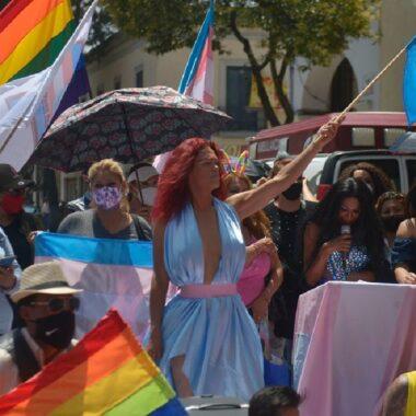 Estados que aprobaron la ley de identidad de género y reconocen la identidad de las personas trans