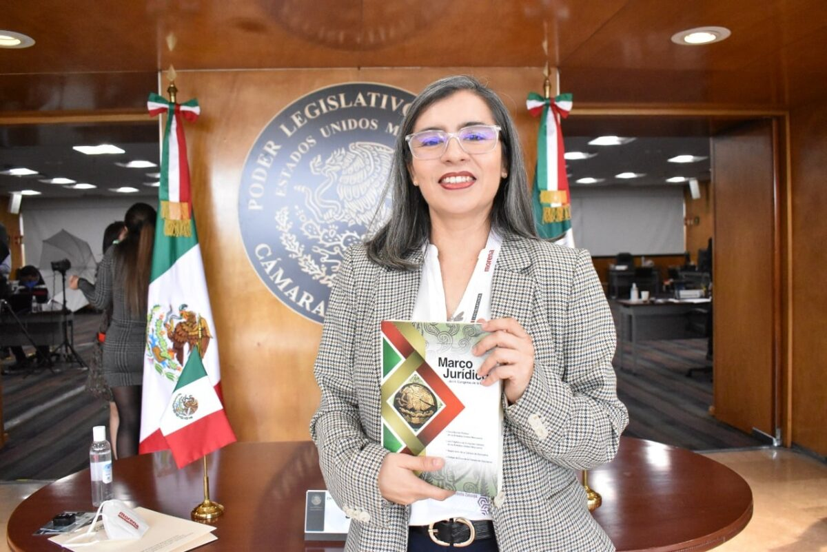 wendy briceño diputadas propuestas lgbt